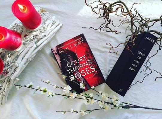 Đặt mua sách tiếng Anh A Court of Thorns and Roses của Sarah J. Maas tại Tinoreadingroom.com